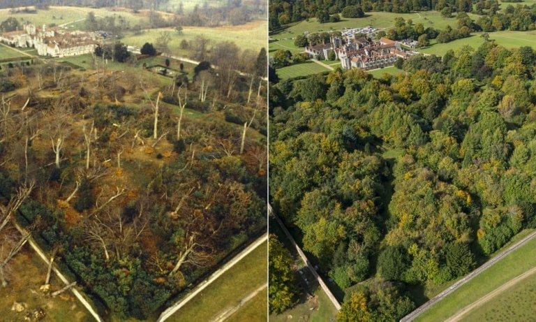 Before and After at Knole, Sevenoaks (Image courtesy of the National Trust)