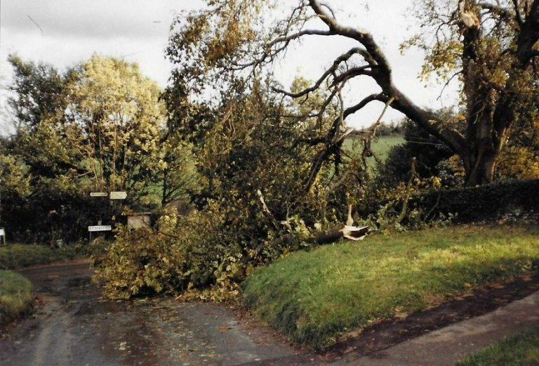 1987 storm damage - churchyard tree on Tumblefield Rd, Stansted, Kent
