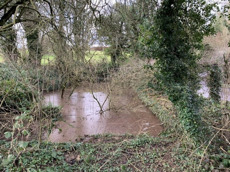 Pond on the south side of Wrotham Hill Road, Stansted, Kent (2020)