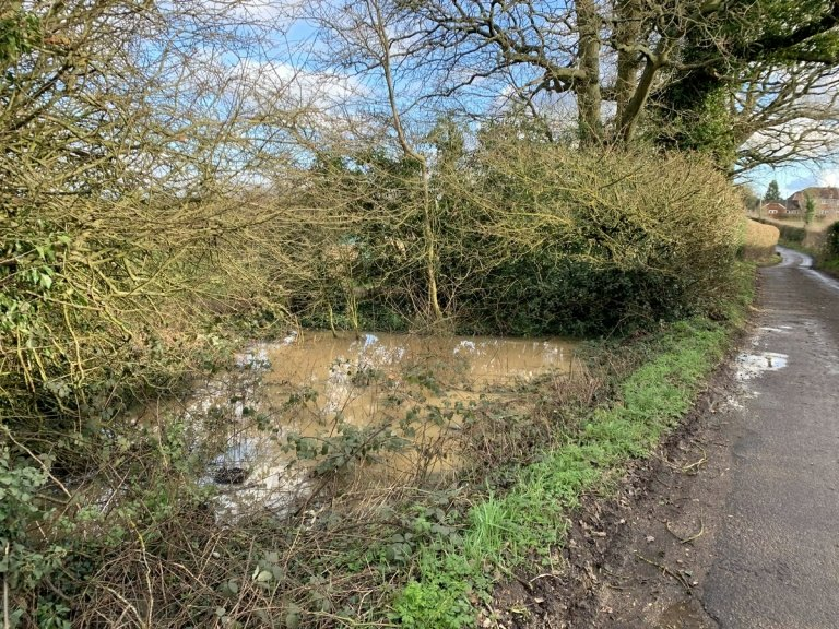 Pond on the north side of Wrotham Hill Road, Stansted, Kent (2020)