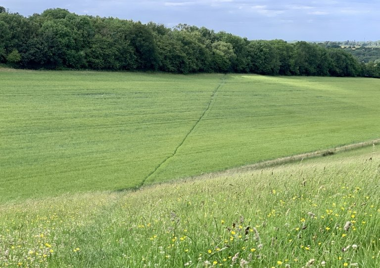 Looking north-west towards Tumblefield Road, Stansted, Kent