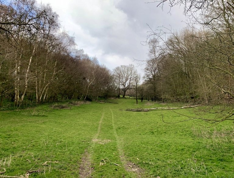Looking north from footpath MR210 towards Lords West.  Tithe Ref: The first part of this area was Pook Hill (69) then an unnamed part of Haytham Green Farm (13).