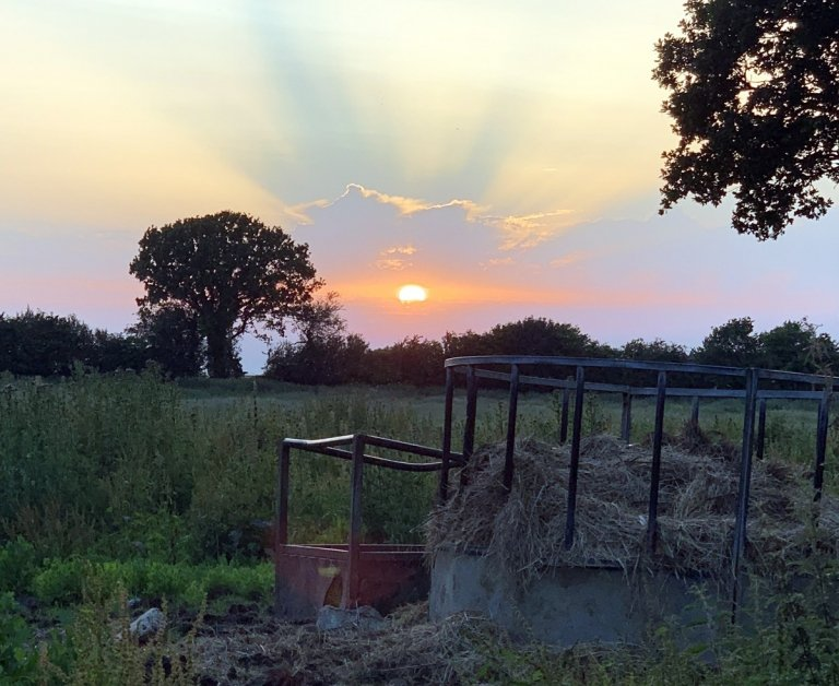 Looking west to sunset across Turkins Field.  Tithe Ref: Turkins Field (383).