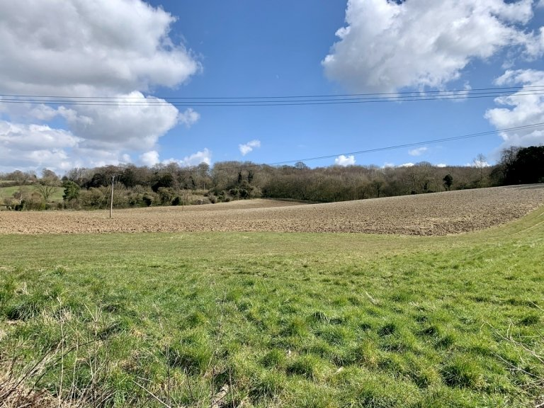 Looking north from Malthouse Road towards Malthouse Cottage.  Tithe Ref: Hockley Field (52).